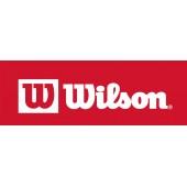 Wilson  (13)