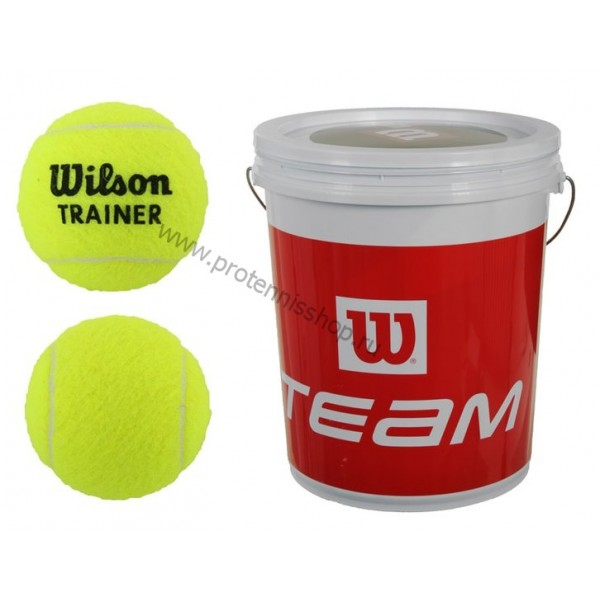 Теннисные мячи Wilson Trainer Tbal 72 мяча
